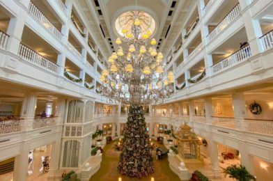 Are These Disney World Hotels Overrated or Underrated? See What Thousands of People Think!