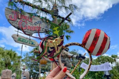 Did You Notice Disney World is More Strictly LIMITING Purchases of Limited Edition Merchandise?