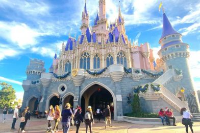 PHOTOS and VIDEOS: Here's What the New Year's Eve Crowds Looked Like in Disney World Today
