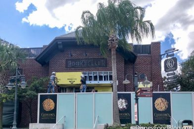 PHOTOS: Construction Walls Have Come DOWN at Everglazed Donuts & Cold Brew in Disney World!