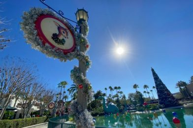 PICS: Christmas Decorations Are Coming Down in Disney World