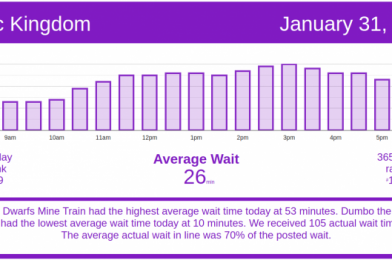 More Moderate Crowds – Disney World Wait Times for Sunday, January 31, 2021
