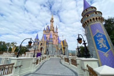 26 Photos & Videos From Our Day In Disney World!