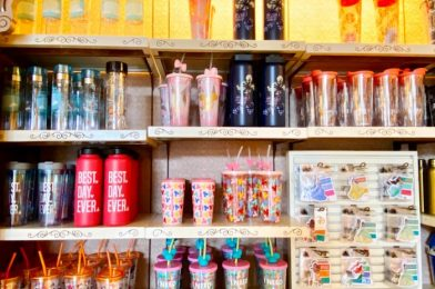 NEW Drinkware at Disney World is All About Mickey!