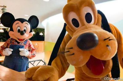 This Might Be The Sweetest Video You'll EVER See From Disney World!