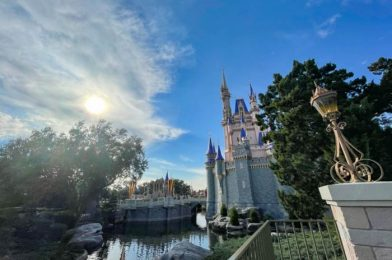 How To Keep Your Disney World Annual Pass If You're A Premier Passport Holder
