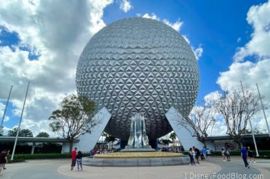 25 Photos and Videos From Our Day At Disney World!