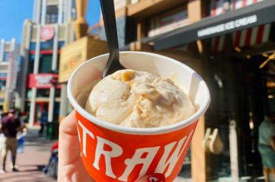 REVIEW: Cinnatopia Cinnamon Bun Ice Cream From Salt & Straw Becomes a Favorite in the Downtown Disney District