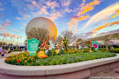 Don't Leave EPCOT Until You've Done THIS!