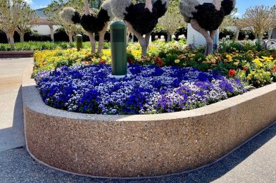 Removal of Hand Washing Stations and Other Changes Seen this Week in the Disney Parks