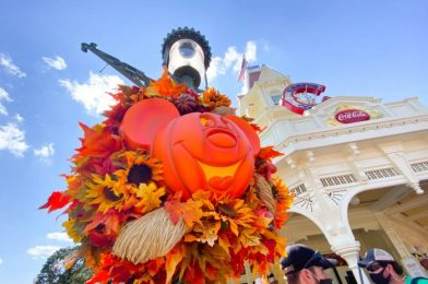 ALL the Questions We Have About Halloween at Disney World This Year