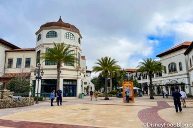 Special Rates at Disney Springs Area Hotels for First Responders and Educators