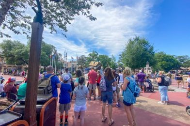 PHOTOS: See What Disney World's Memorial Day Crowds Look Like