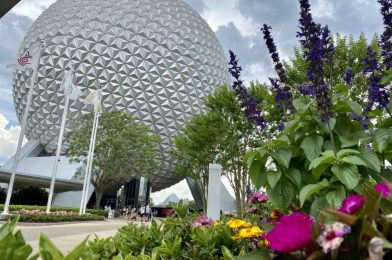 PHOTO REPORT: EPCOT 5/11/21 (Points of Light Installed On North Side of Spaceship Earth, New Construction Walls In Morocco, Strawberry Funnel Cake Frappuccino, and More)