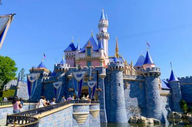 Disney Parks Chairman Comments on the Future of Park Passes