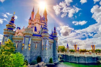Fix Those Disney Blues With Some Online Shopping!
