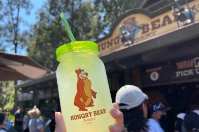 PHOTOS: New Humphrey the Bear Cup Debuts at Hungry Bear Restaurant at Disneyland