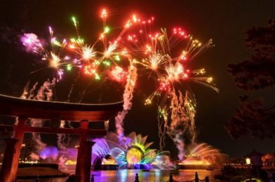 TIMES Released for Disney World's Brand New Fireworks Shows
