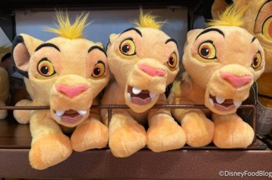 This Disney World Plush Is Just Asking to Be a Meme