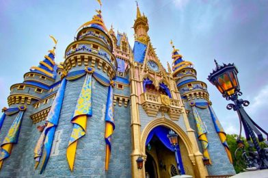 11 Things You Need to Know About Disney World in August