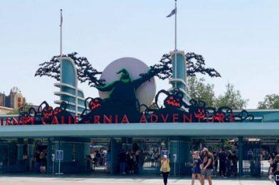 MORE Details Released on Oogie Boogie Bash in Disneyland Resort!