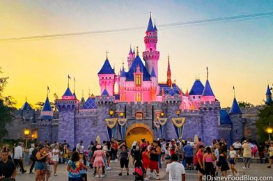 News: PRICING and Details Released for Disneyland's NEW Magic Key Annual Pass!