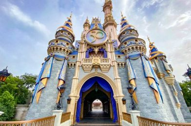 What's New in Magic Kingdom: A BIG 50th Anniversary Addition and TRON Construction!