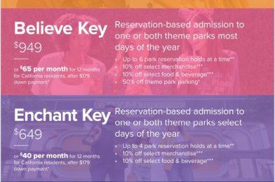 Details Released Regarding Disneyland's New Magic Key & the Return of WDW New Pass Sales