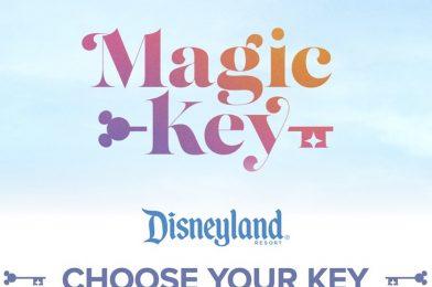 "Walt Disney World Annual Pass Sales to Resume ""Soon"""