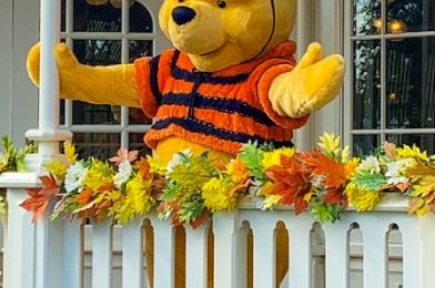 PHOTOS: Disney World's Classic Halloween Pumpkins Have Arrived on Main Street