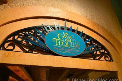 Review: The Secret to Getting Disney World's New Ice Cream Margarita!