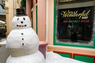 Disney Just Made it Harder to Resist Buying Holiday Merchandise in October…