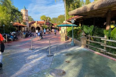 PHOTOS: Jungle Green Pavement Nears Completion in Adventureland As Walkway Restoration Continues at Magic Kingdom